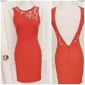 Zara Trafaluc orange open back lace mini dress S
